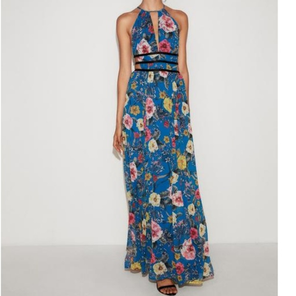 7fe5694c780 Express floral strappy plunging maxi dress